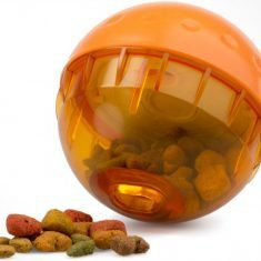 Treat Ball That Encourages Your Dog To Be Active & Playful